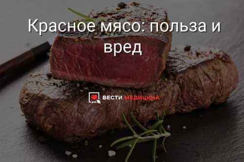 Мясо: польза и вред, какое мясо полезнее, кому