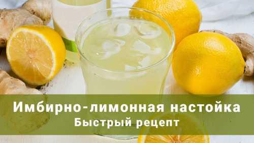 Рецепты лимонных настоек, секреты выбора