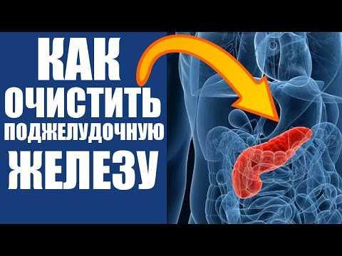 Очищение поджелудочной железы