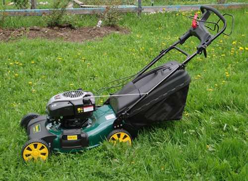 Как выбрать газонокосилку для дачи, какие они бывают