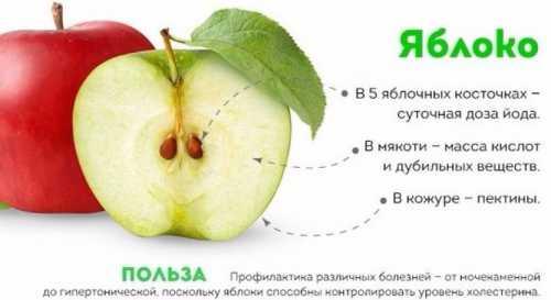 Если допустить оголения кожицы верхних плодов, возможно начало гниения, которое постепенно заразит все содержимое в емкости