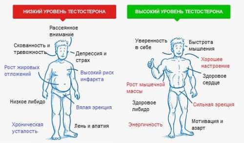 Низкий  тестостерон у мужчин: симптомы, причины,